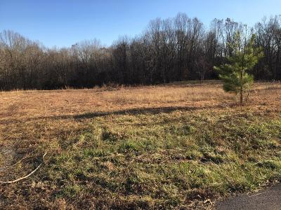Woodlawn Residential Lots & Land Active Under Contract: 1 Lake Rd