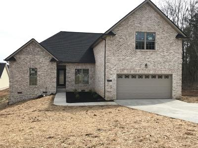 Smyrna Single Family Home For Sale: 5309 Patience Dr