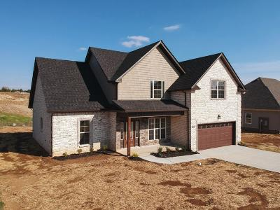 Smyrna Single Family Home For Sale: 5403 Endurance Lane, Lot 36