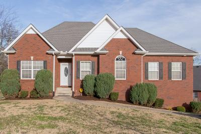Smyrna Single Family Home For Sale: 810 Bristol Dr