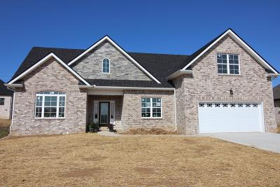 Smyrna Single Family Home For Sale: 5506 Endurance Lane, Lot 66
