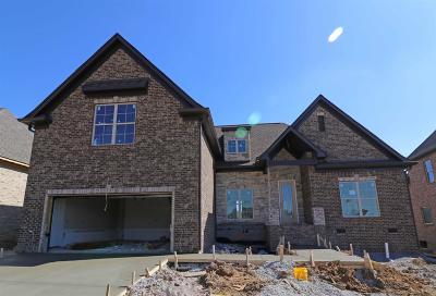 Mount Juliet Single Family Home For Sale: 212 Farmbrook Lane