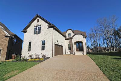 Mount Juliet Single Family Home For Sale: 15 Hickory Creek Circle