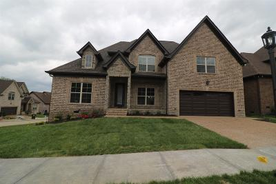 Mount Juliet Single Family Home For Sale: 11 Hickory Creek Circle