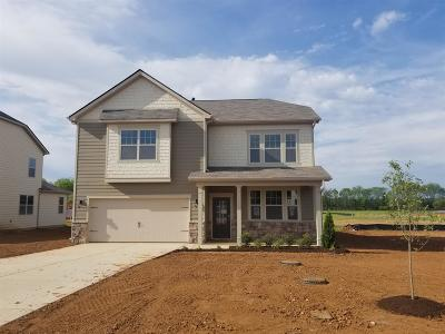 Single Family Home For Sale: 314 William Dylan Dr- Lot 53