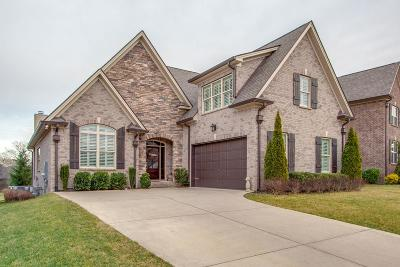 Spring Hill Single Family Home For Sale: 4150 Miles Johnson Pkwy