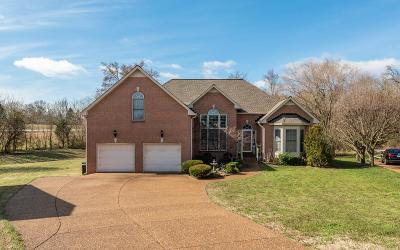 Hendersonville Single Family Home For Sale: 163 Huntington Pl