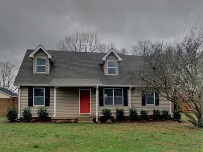 Smyrna Single Family Home For Sale: 209 Glenrose Ln