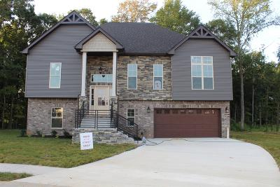 Clarksville Single Family Home For Sale: 34 Reserve At Sango Mills