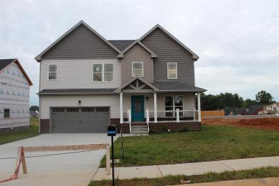Clarksville Single Family Home For Sale: 49 Reserve At Sango Mills