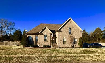 Mount Juliet Single Family Home For Sale: 601 Reagan Ln