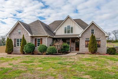 Columbia Single Family Home For Sale: 431 Carters Creek Pike