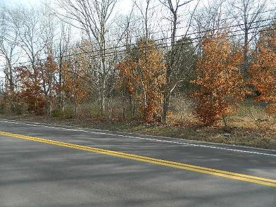 Thompsons Station  Residential Lots & Land For Sale: 4615 Bethesda Rd