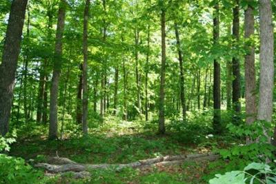 Residential Lots & Land For Sale: Cornerstone Pkwy