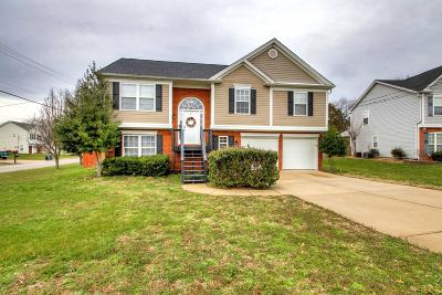 Mount Juliet Single Family Home For Sale: 2108 Ponty Pool Dr