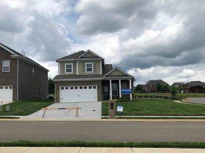 Murfreesboro TN Single Family Home For Sale: $299,990