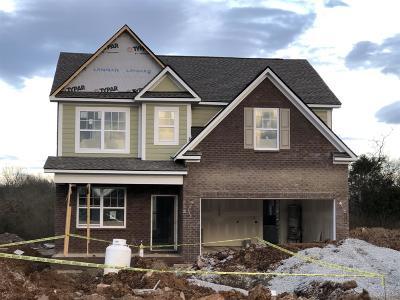 Single Family Home For Sale: 3126 Rift Lane Lot 38
