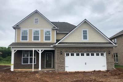 Murfreesboro Single Family Home For Sale: 3158 Rift Lane Lot 45