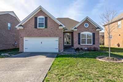 Spring Hill Single Family Home For Sale: 3006 Sommette Dr