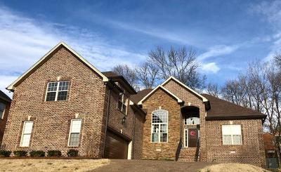 Goodlettsville Single Family Home For Sale: 1145 Kimberly Dr