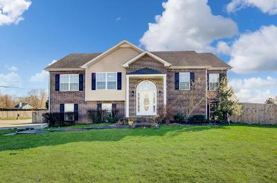 Clarksville TN Single Family Home For Sale: $256,000
