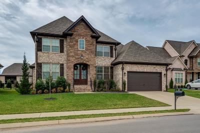 Spring Hill Single Family Home For Sale: 4041 Haversack Dr