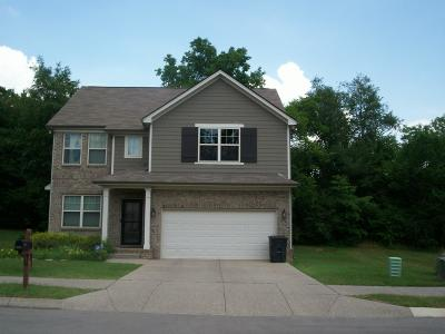 Spring Hill Single Family Home For Sale: 1051 Achiever Cir