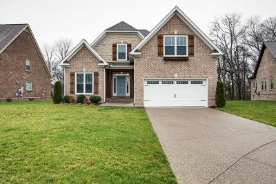 Spring Hill Single Family Home For Sale: 3019 Foust Dr