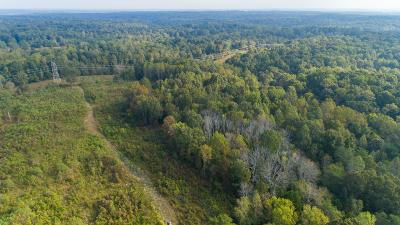 Williamson County Residential Lots & Land For Sale: Drag Strip Rd