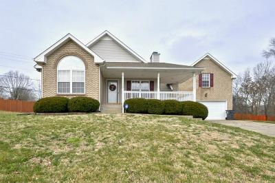 Clarksville Single Family Home For Sale: 854 Boxwood Ct