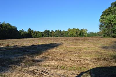 Residential Lots & Land For Sale: Panhandle Rd
