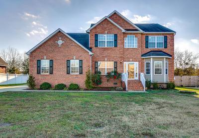 Murfreesboro Single Family Home For Sale: 401 Brickle Dr