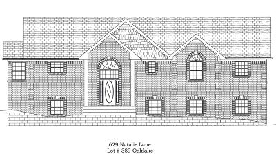 Spring Hill Single Family Home Under Contract - Not Showing: 629 Natalie Ln