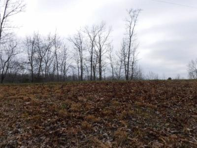 Residential Lots & Land For Sale: 16 Western Way