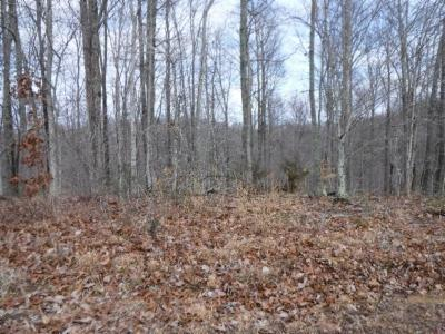 Residential Lots & Land For Sale: 18 Western Way