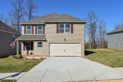 Clarksville Single Family Home For Sale: 1193 Henry Place Blvd