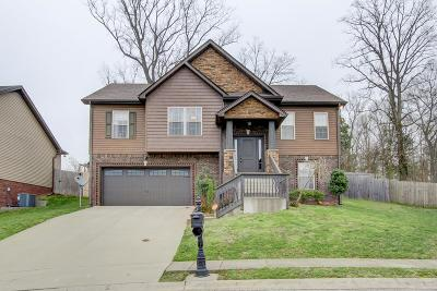 Clarksville Single Family Home For Sale: 661 Wolfchase Ct.