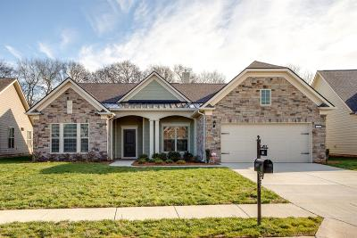 Spring Hill Single Family Home For Sale: 1012 Coffee Rdg