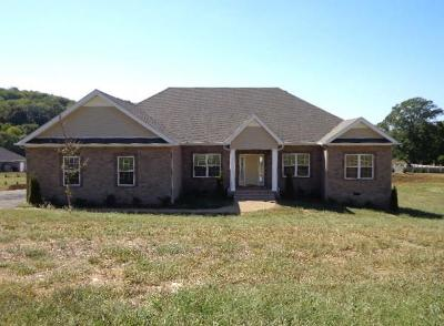 Spring Hill Single Family Home For Sale: 1455 Cliff Amos Rd