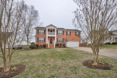 Spring Hill Single Family Home For Sale: 2845 Faith Ln