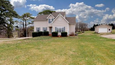 Maury County Single Family Home For Sale: 745 Mount Olivet Rd