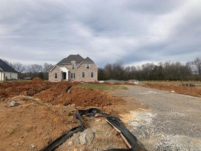 Murfreesboro TN Single Family Home Under Contract - Not Showing: $445,000