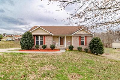 Cheatham County Single Family Home For Sale: 1005 Ridgeview Dr