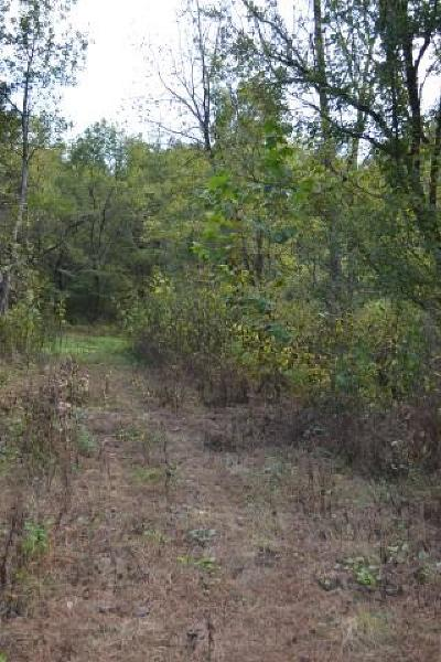 Cannon County Residential Lots & Land For Sale: 1259 Hurricane Creek