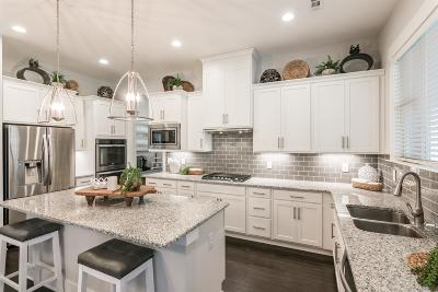 Hendersonville Single Family Home For Sale: 209 Ashington Cir