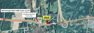 Adams, Clarksville, Springfield, Dover Commercial For Sale: 1399 Dover Rd