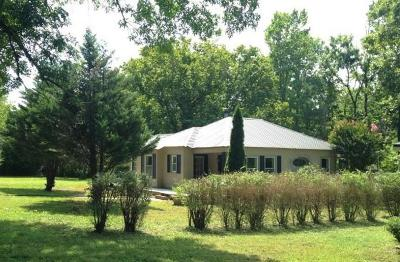 Houston County, Montgomery County, Stewart County Single Family Home For Sale: 346 Honey Fork Rd