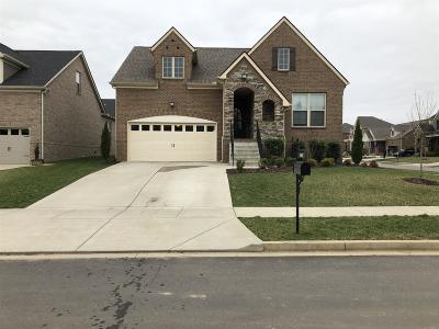 Goodlettsville Single Family Home For Sale: 402 Fall Creek Circle