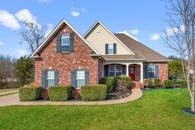 Hendersonville Single Family Home Under Contract - Showing: 112 Hattie Ct
