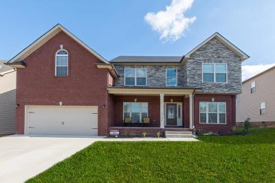 Clarksville Single Family Home For Sale: 1131 Hilliard Ln